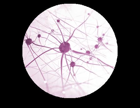 neurocosmetica
